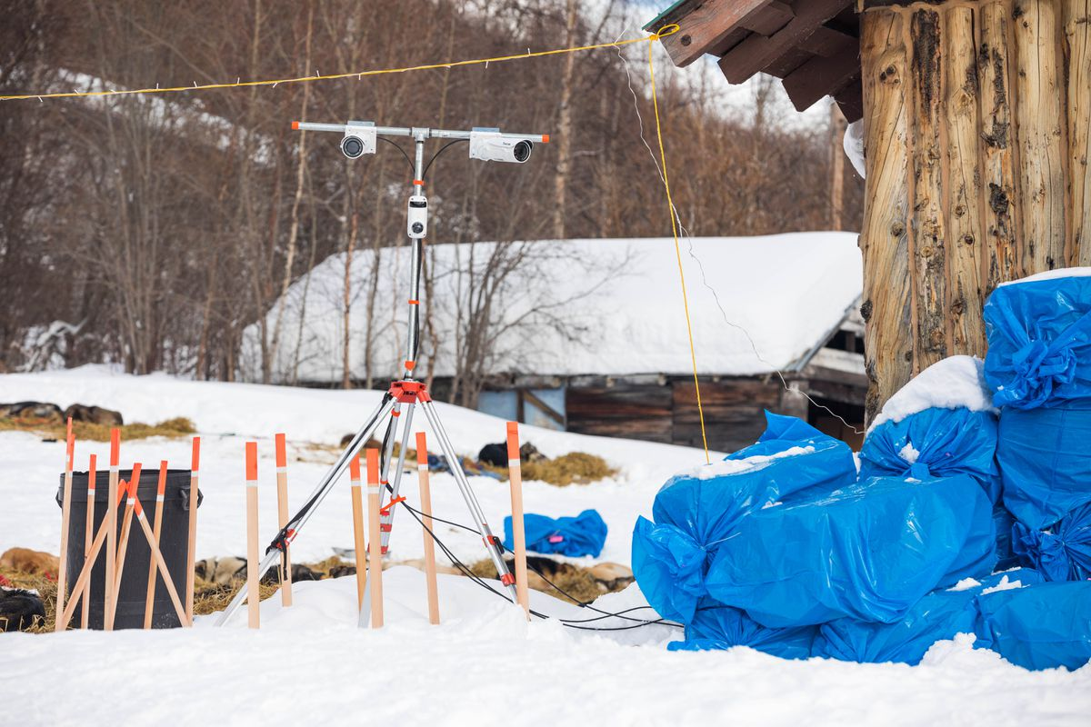 Security cameras monitor the dog yard at the Takotna checkpoint. (Loren Holmes / ADN)