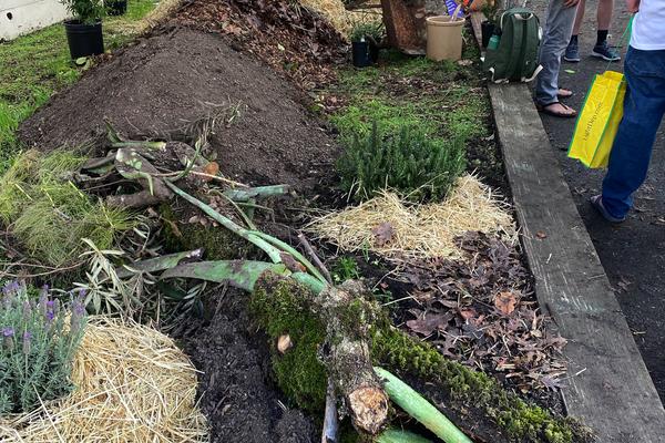 A demonstration hugelkultur garden at the Santa Rosa fairgrounds, Dec. 2019. Hugelkultur is a German practice that uses dead trees to create garden beds. (Photo by Jeff Lowenfels)