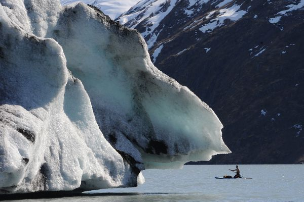 John Limon paddles a stand-up paddle board past an iceberg grounded in Portage Lake near the Begich, Boggs Visitor Center on Sunday, April 14, 2019. (Bill Roth / ADN)