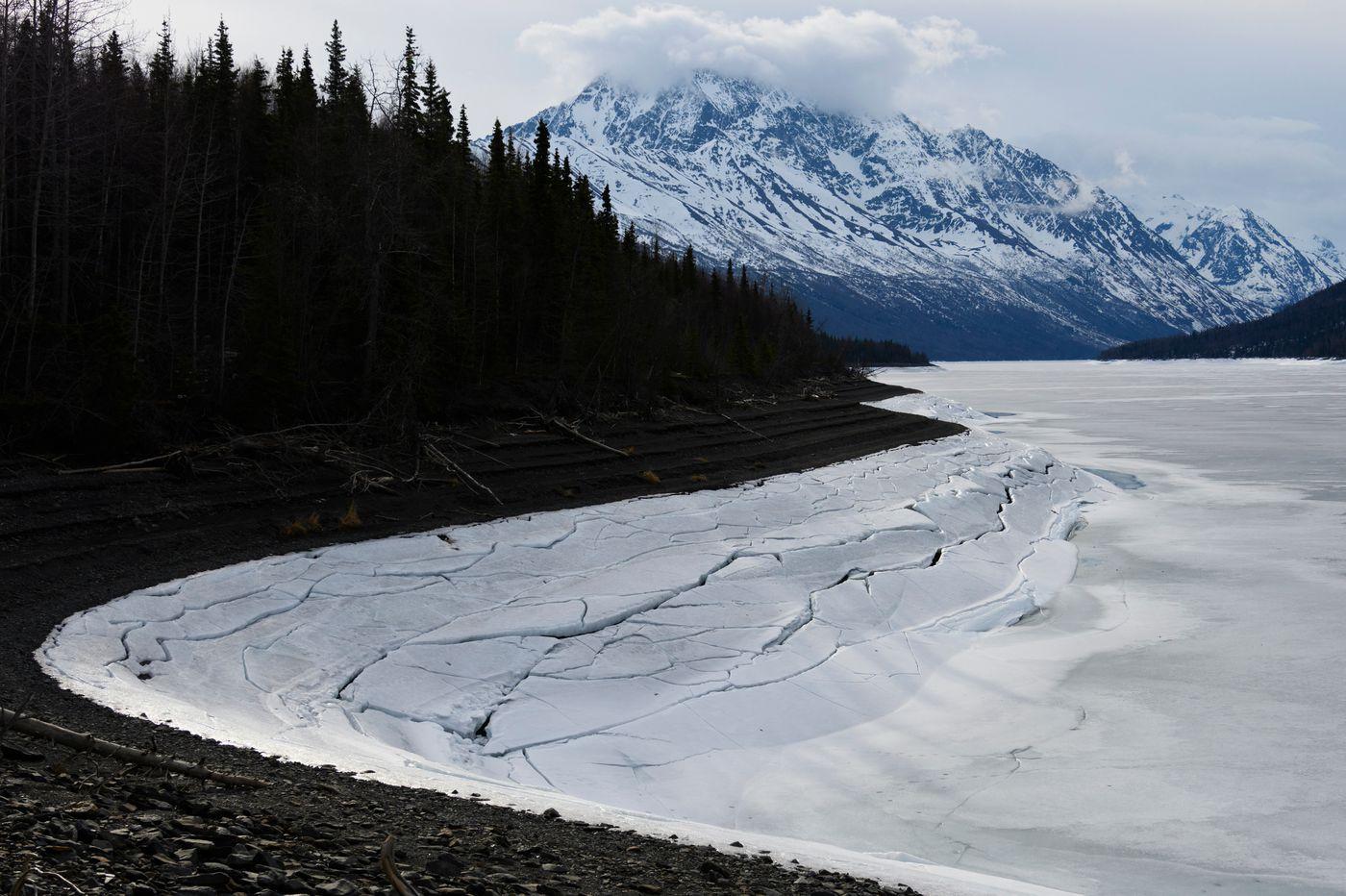 Ice shows cracks along the shoreline of Eklutna Lake on April 19, 2020. (Marc Lester / ADN)