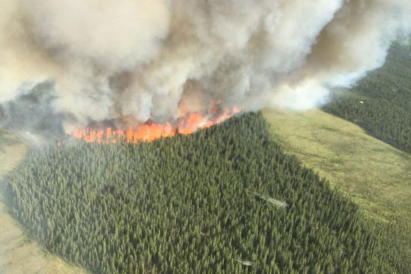 The East Fork Fire, pictured around 8 p.m. Friday, June 16, 2017, ignited with a lightning strike in the Kenai National Wildlife Refuge a day earlier. (John Glover / Alaska Division of Forestry)