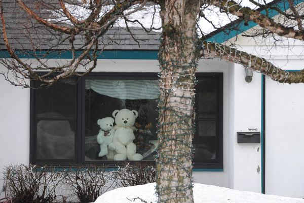 Teddy bears look out the window of a home in the Turnagain Heights subdivision on Thursday, April 16, 2020. People have been placing Teddy bears in the widows of their homes during the Coronavirus outbreak so social distance walkers young and old can count them. The Teddy Bear Hunt phenomenon patterned after Michael Rosen's 1989 children's book