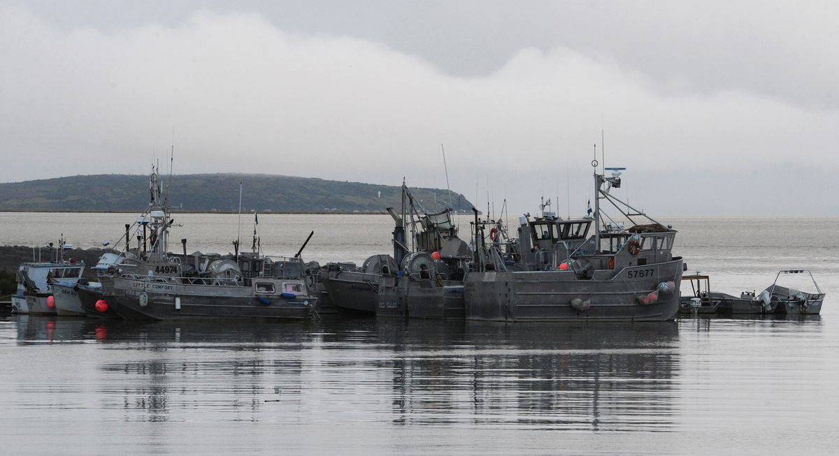Commercial fishing boats moored in Dillingham on Monday, August 26, 2013, after the sockeye salmon fishing season. (Bill Roth / ADN)