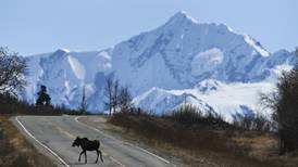 Trying to hit a moving target: How do we keep the state's moose population healthy?