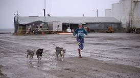 At a rare marathon in Kotzebue, chest waders, piggyback ride and sled dogs are part of the race plan