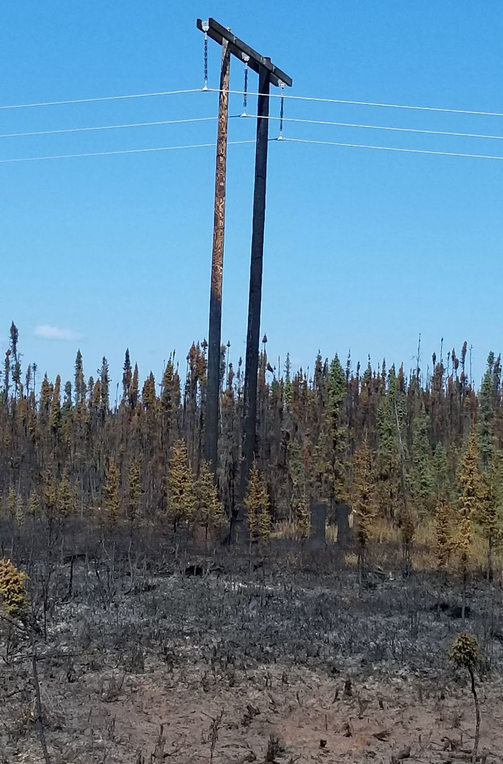 A power line is severely damaged by the Swan Lake fire, Aug. 24, 2019. (Homer Electric Association)