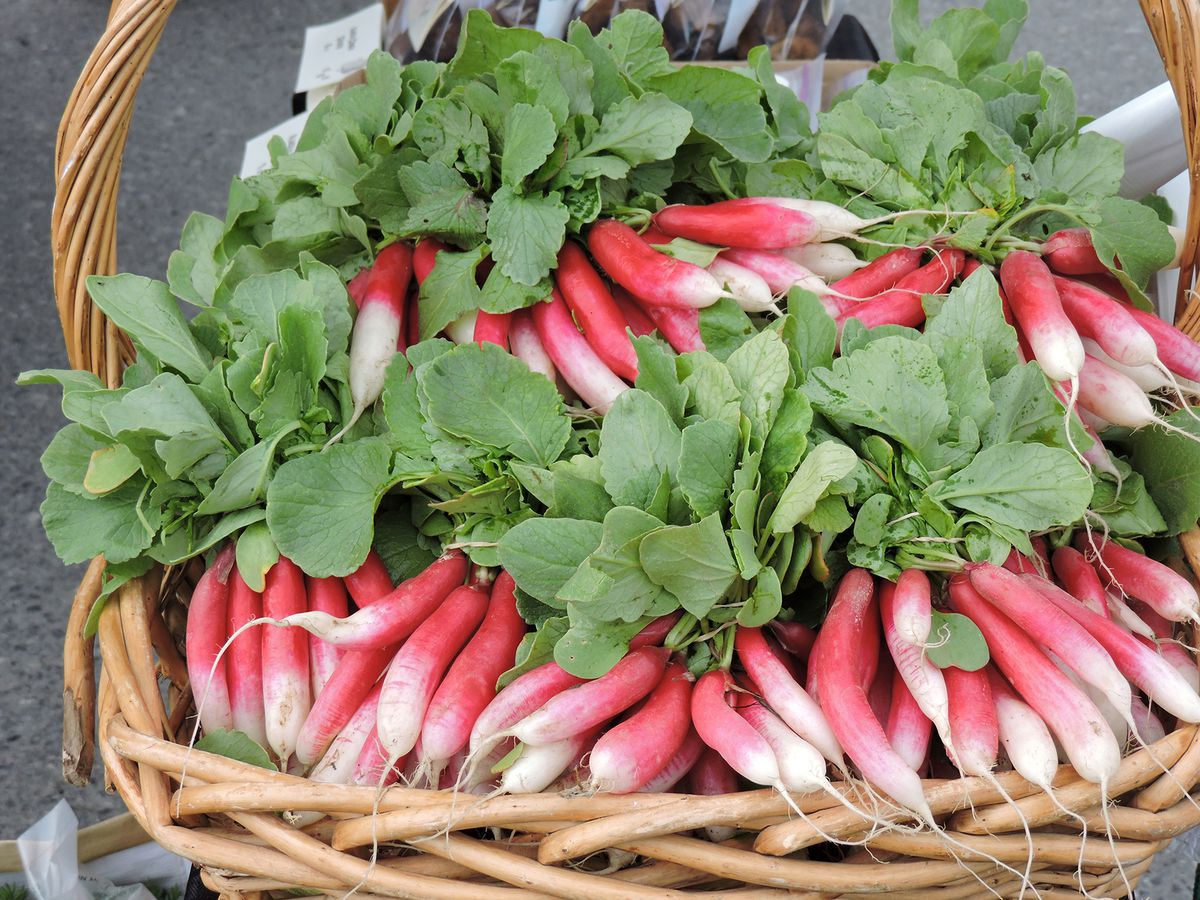 French radishes (Courtesy of South Anchorage Farmers Market)