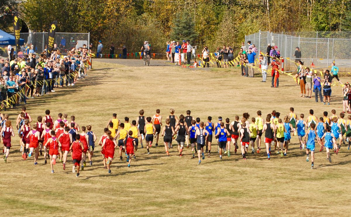 Runners in the boys varsity race leave the starting line at the Mustang Smokin' Stampede 5K races Saturday at the Beach Lake Trails at Chugiak High. (Matt Tunseth / ADN)