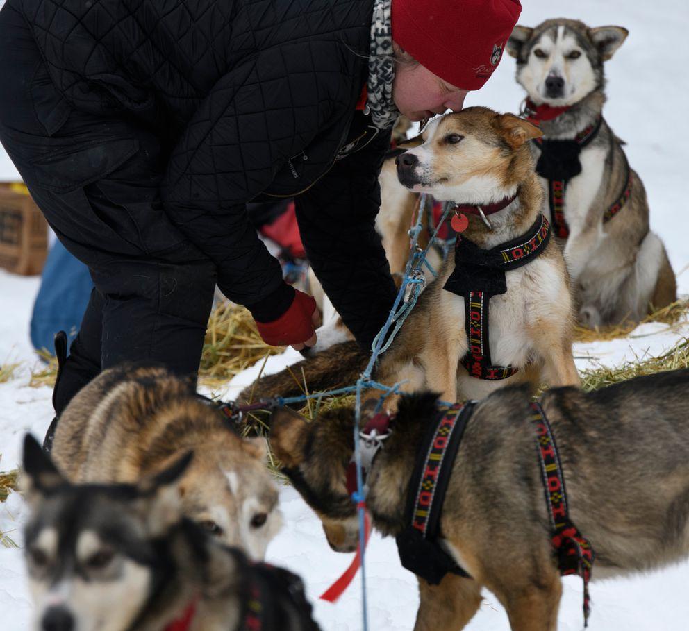 Aliy Zirkle prepares her team to leave Eagle Island during the 2019 Iditarod. (Marc Lester / ADN)
