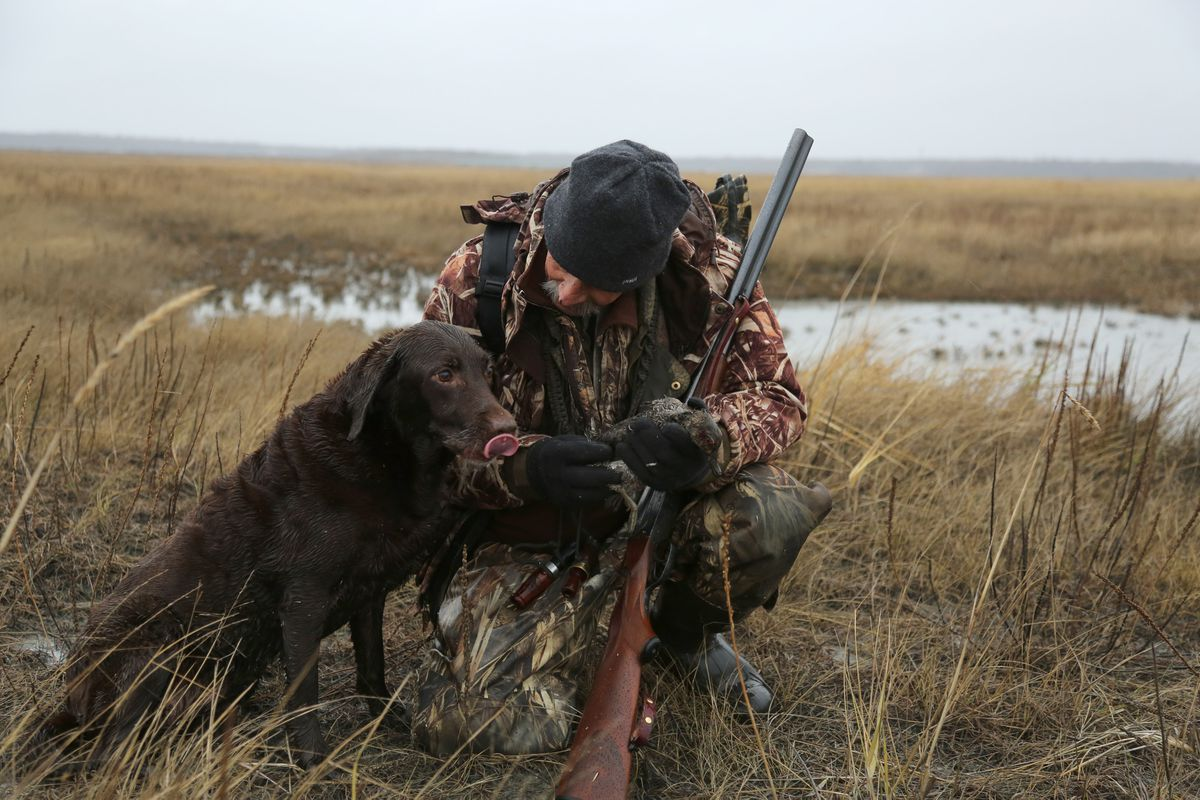 Steve Meyer and Cheyenne, a couple of old dogs, learn some new tricks with a double-barreled shotgun. (Photo by Christine Cunningham)