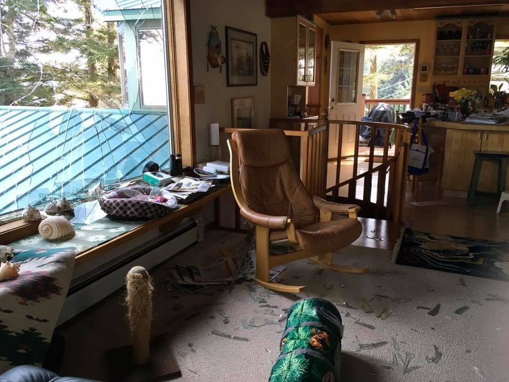 An eagle flew through a window in Stacy Studebaker's home in Kodiak Saturday May 4, 2019. (Photo by Stacy Studebaker)