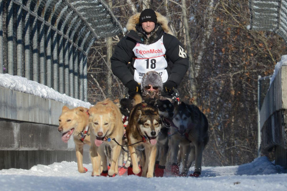 Dallas Seavey and his team travel over the Northern Lights bridge during the ceremonial start of the 2017 Iditarod. (Anne Raup / Alaska Dispatch News)