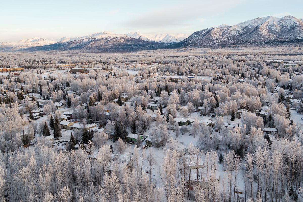 Frost-covered trees in Chester Valley in Anchorage on Tuesday, Jan. 8, 2019. (Loren Holmes / ADN)