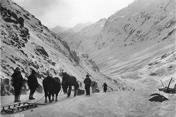 Klondikers with horse drawn sleds on the Chilkoot Trail looking toward Sheep Camp, Alaska, 1898 (Eric A. Hegg / Wikimedia Commons)