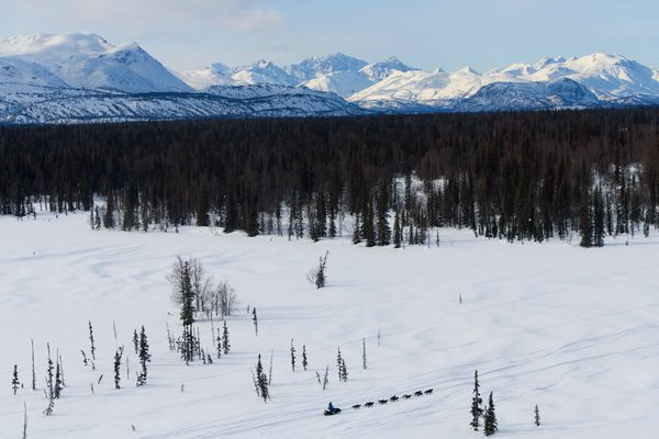 Martin Buser mushes between the Skwentna and Finger Lake checkpoints. Iditarod Trail Sled Dog Race mushers headed toward the Alaska Range mountains on March 9, 2020. (Marc Lester / ADN)