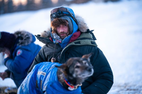 Nicolas Petit tends to his dogs after arriving in Nikolai on Tuesday, March 10, 2020 during the Iditarod Trail Sled Dog Race. (Loren Holmes / ADN)