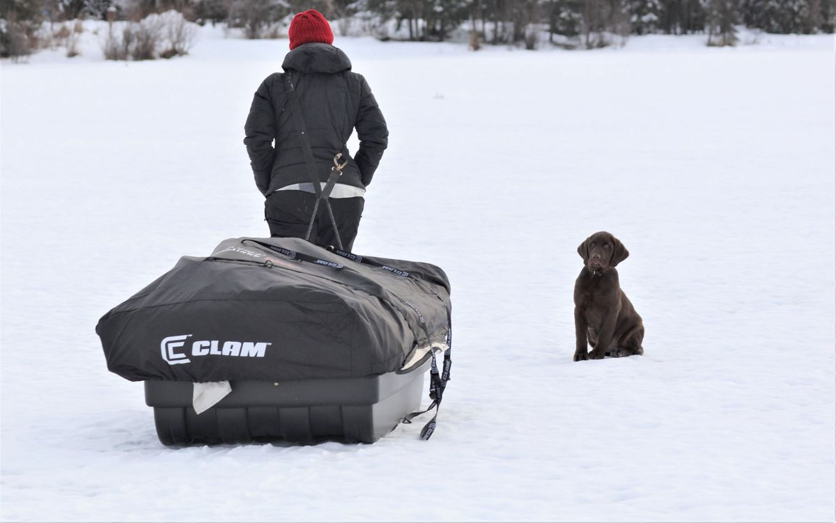 Christine Cunningham pulls her new monster-size ice fishing shelter while Rigby watches. (Photo by Steve Meyer)