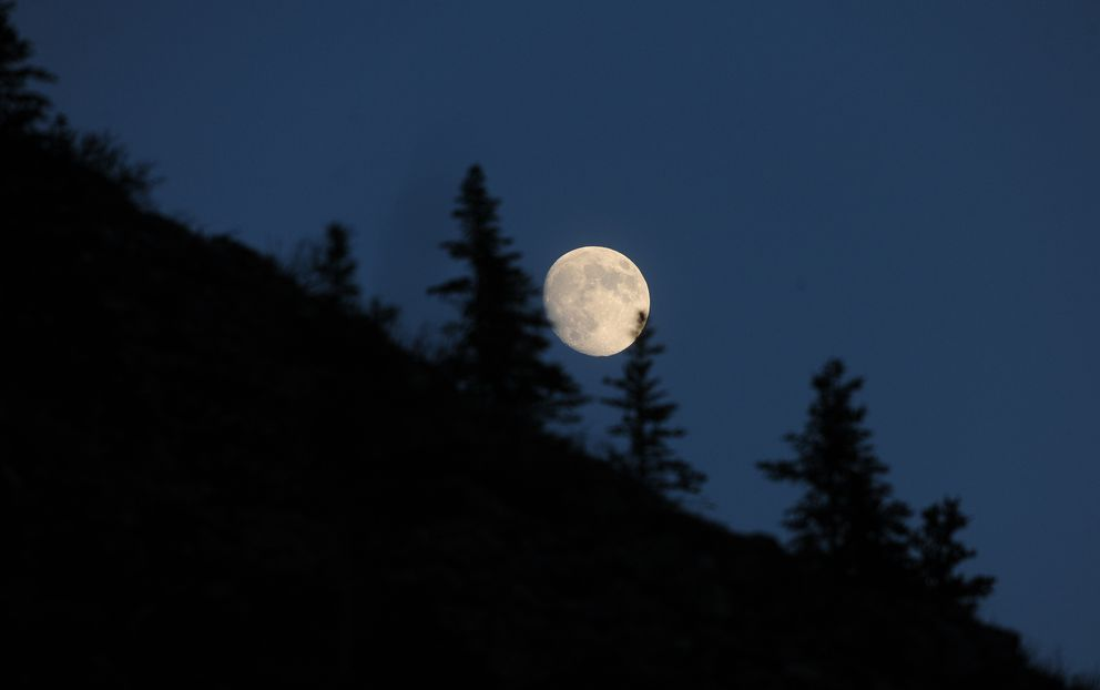 A nearly full moon rises over a ridgeline in Denali National Park and Preserve in May. Author Kathleen Dean Moore had a writing residency in the park and composed, among other things, an instructional flier for visitors traveling by bus. (Bob Hallinen / Alaska Dispatch News)