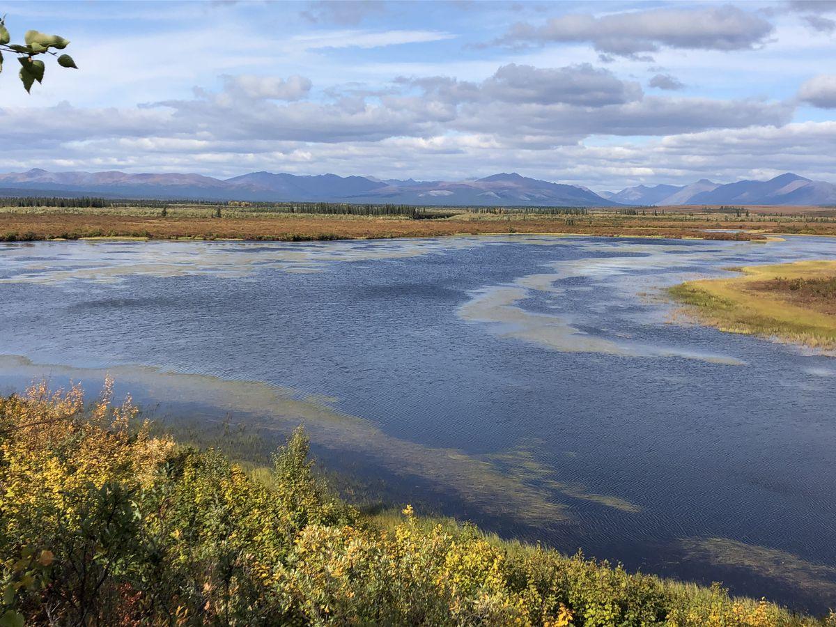 The Kobuk River (Seth Kantner)