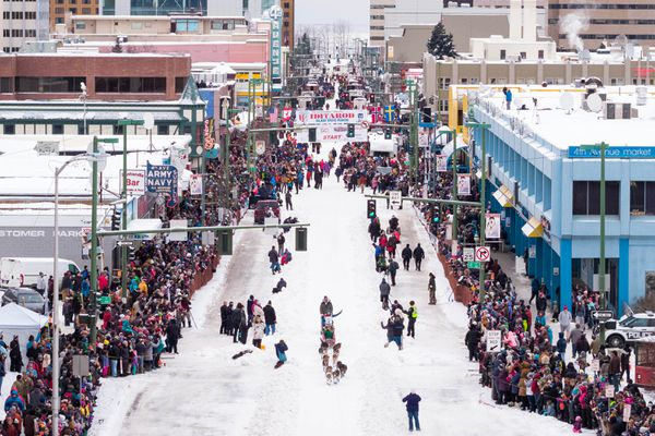 Rookie musher Shaynee Traska of Gladwin, Mich. mushes down 4th Avenue Saturday, March 3, 2018 during the ceremonial start of the Iditarod Trail Sled Dog Race. (Loren Holmes / ADN)
