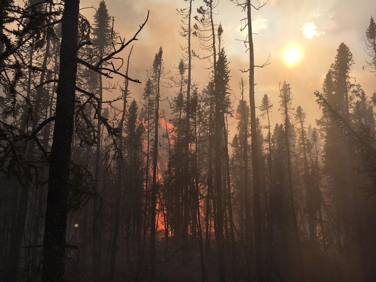 The Chistochina River Fire on Saturday, Aug. 5, 2017, as firefighters worked to put a containment line around the blaze. (Zack Horner / Alaska Division of Forestry)