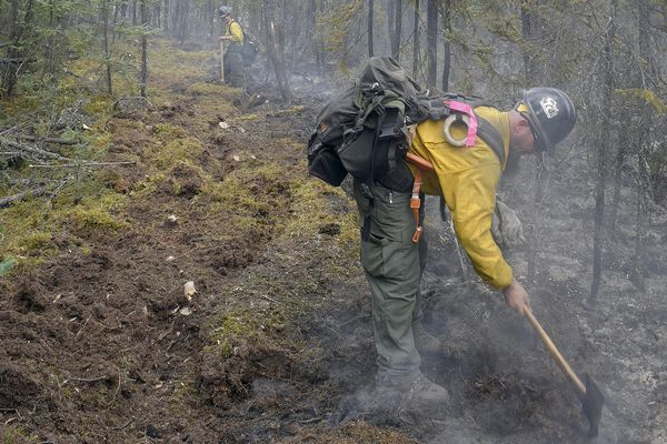 Members of the Tanana Chiefs Initial Attack Crew improve a saw line along the edge of the North Robertson Fire on Friday, June 2, 2017. Burning along the Alaska Highway about 30 miles northwest of Tok, Alaska, the fire was reported to Alaska Division of Forestry on June 1. Sam Harrel/Alaska DNR/Division of Forestry