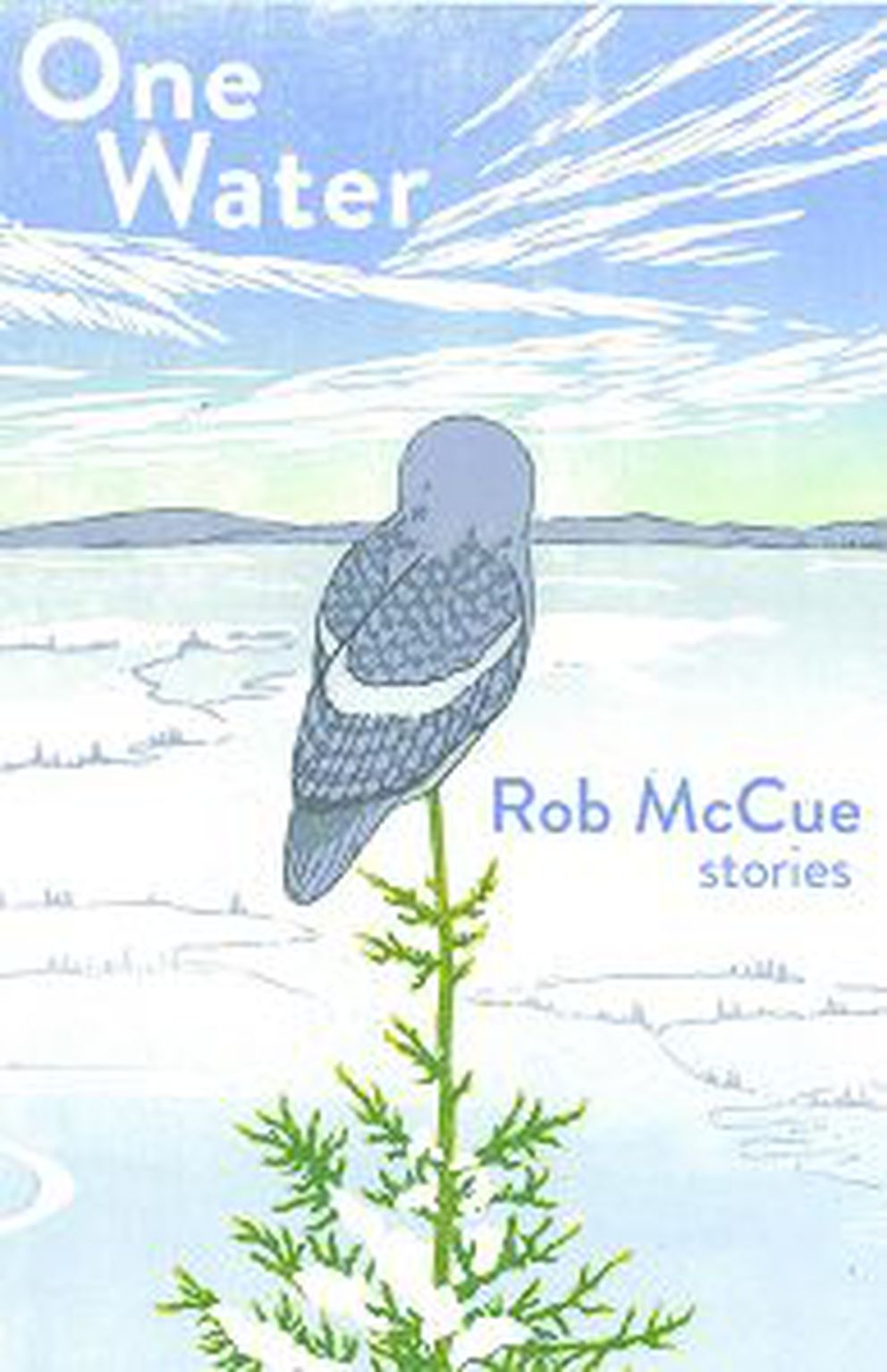 'One Water, ' by Rob McCue