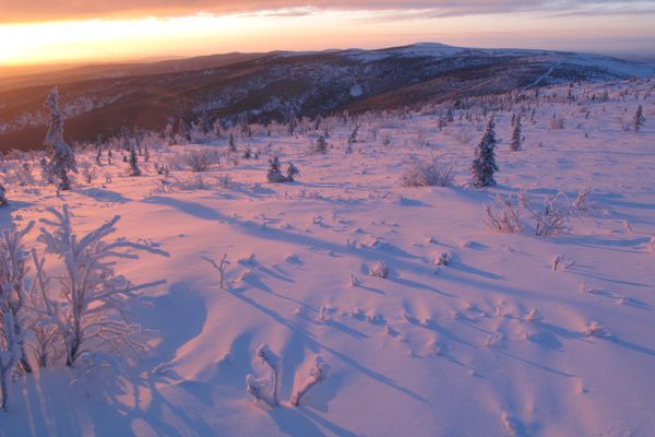 December sun creates the longest shadows of the year in the hills above Fairbanks. (Photo by Ned Rozell)