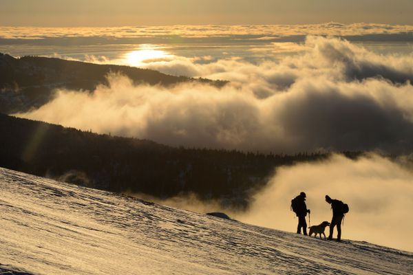 Mike Anthony, left, talks with Mark Robidoux on a hike above the fog on the Flattop trail in Chugach State Park on January 31, 2019. Anthony's dog, Lyla, is at center. (Marc Lester / ADN)