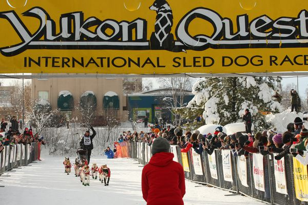 Matt Hall drives his team down the finish chute as he wins the 2017 Yukon Quest International Sled Dog Race Tuesday, February 14, 2017 in Fairbanks, Alaska. The 1,000-mile race began in Whitehorse, Yukon, Canada just over 10 days ago. (Eric Engman / News-Miner)