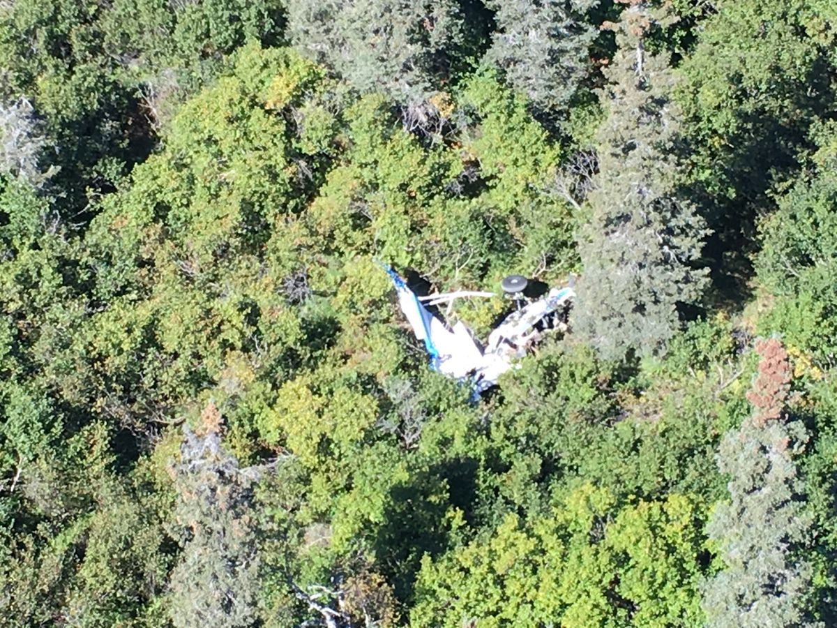 A Piper PA-18 Super Cub rests in trees near Russian Mission, after a Wednesday, Aug. 31, 2016 midair collision with a Cessna 208 Caravan. All five people on board the two planes died. (Alaska State Troopers)