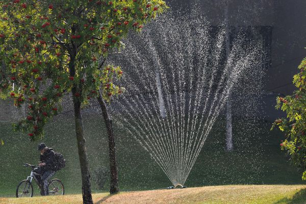 A bicyclist rides past a lawn sprinkler at the Z.J. Loussac Public Library on Thursday, Aug. 29, 2019. Parts of Southcentral Alaska are experiencing an extreme drought this summer according to the U.S. Drought Monitor and is on track to being the driest ever recorded. Anchorage has recorded less than an inch of rainfall since June 1 and only 1/100th of an inch of rain so far in August. (Bill Roth / ADN)