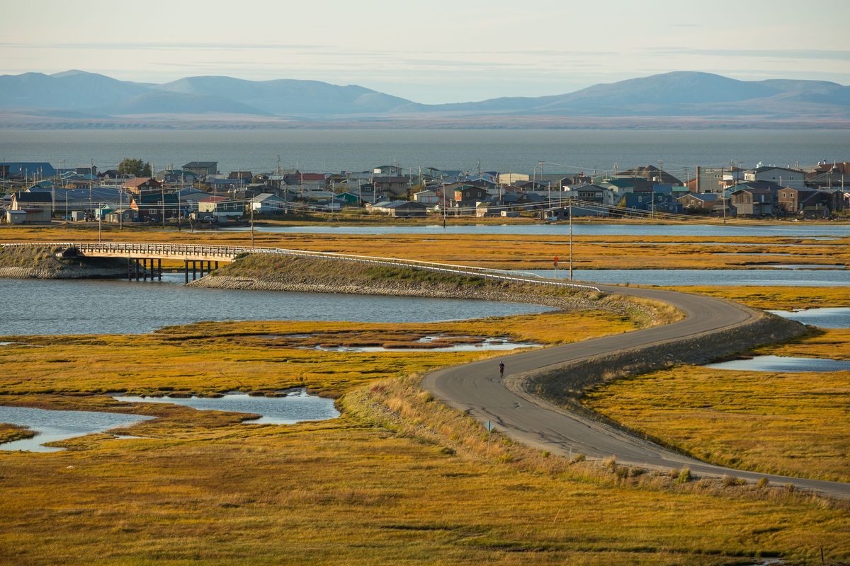 The town of Kotzebue, Alaska, on Monday, August 31, 2015, with Kotzebue Sound in the distance. (Loren Holmes / ADN)