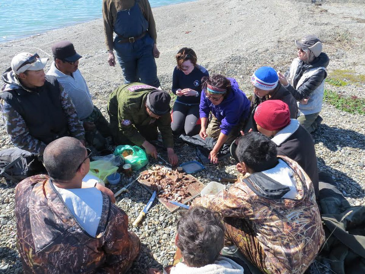 Russian Chukchi marine mammal hunters snack on whale intestine and walrus during a break on the Bering Sea coast near the village of Lorino. The boat crews recently took Alaska travelers from Provideniya to Russian's northeastern-most village of Uelen.Photo courtesy David Ramseur