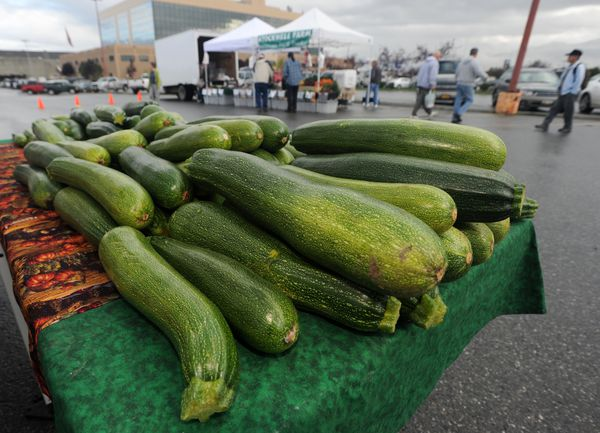 A table laden with zucchini is presented by Glacier Valley Farm of Palmer, September 4, 2013, in front of the Dimond Hotel. (Erik Hill / ADN archive 2013)