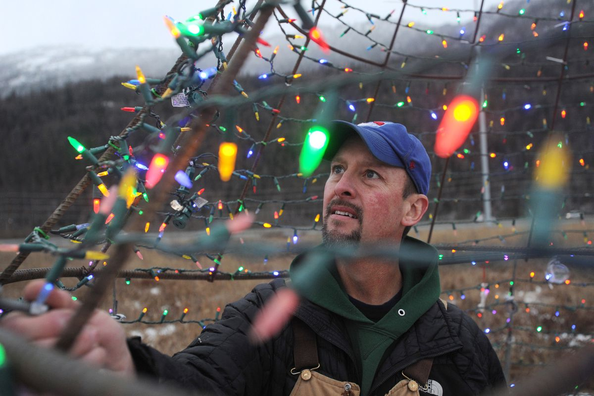 Jason Tolstrup checks the lights on the replacement Christmas tree along the Glenn Highway near the Old Glenn overpass on Wednesday. The original spruce tree has died, and the new tree will be lit for the first time on Thanksgiving Day. (Bill Roth / ADN)