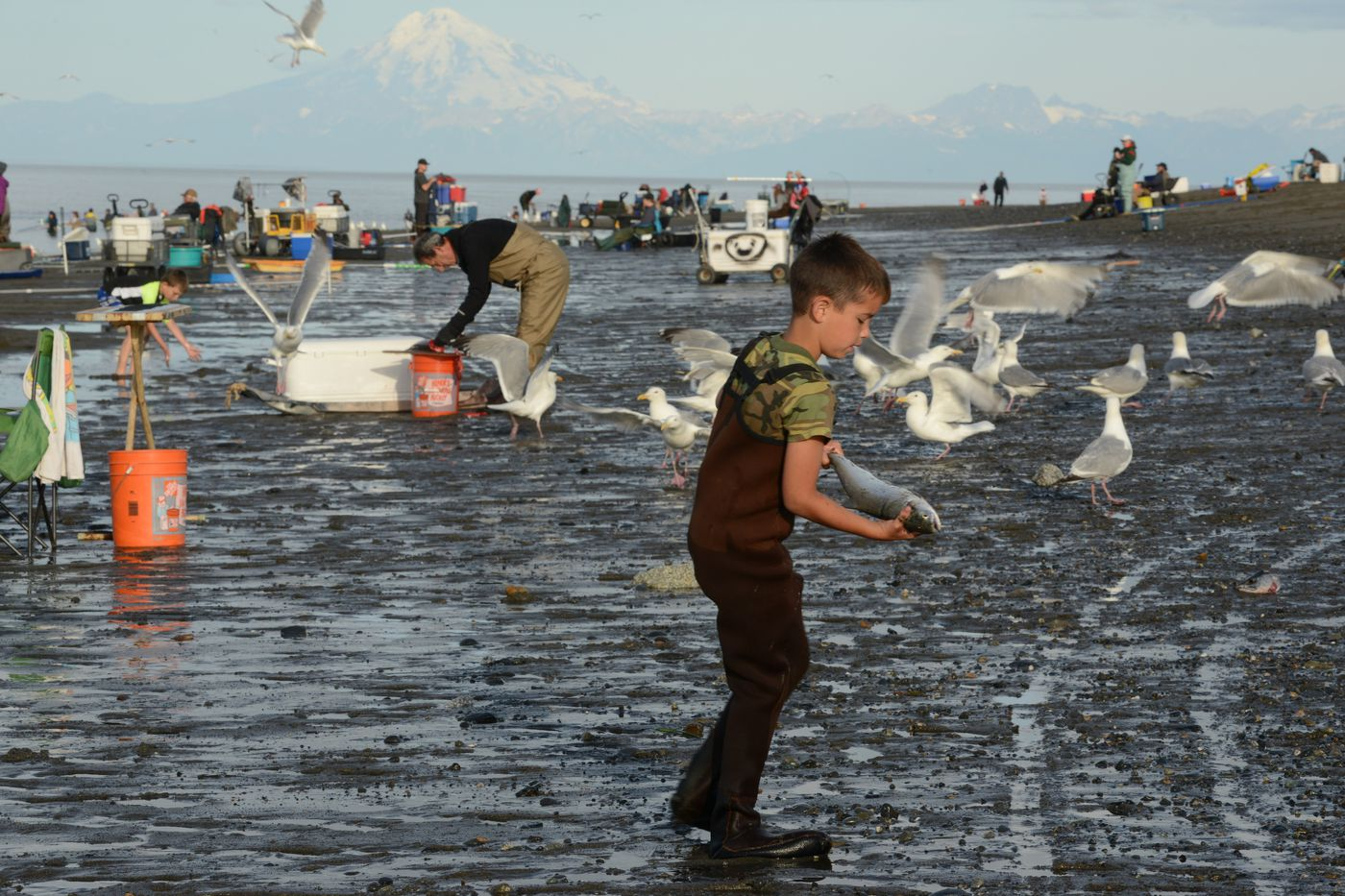 The Kenai River beach scene was busy with people, fish and birds July 21, 2020. (Anne Raup / ADN)