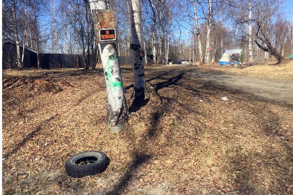 Peters Creek residents hope to turn this vacant lot into a community park. The land was foreclosed on by the Municipality of Anchorage for unpaid taxes in December, 2018. (Matt Tunseth / Chugiak-Eagle River Star)