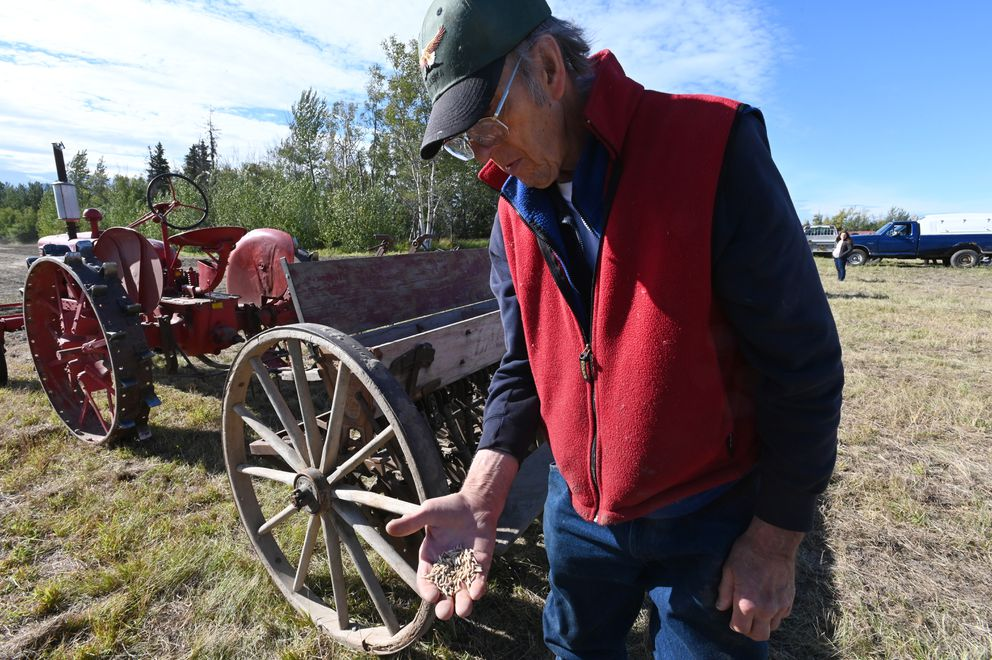 Standing near a 1917 La Crosse grain drill, Al Hecker holds a handful of oats and pea seed that were planted during Harvest Fest on Sunday, Sept. 6, 2020. (Bill Roth / ADN)