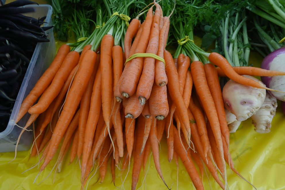 Bundles of carrots for sale at the Grow North Farm along Mountain View Drive on Sunday. (Bill Roth / ADN)