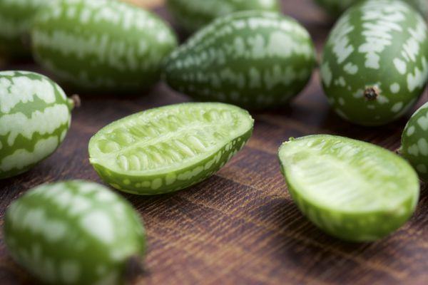 Melothria scabra, also known as cucamelons or mouse melons, are only about an inch long (Getty Images)