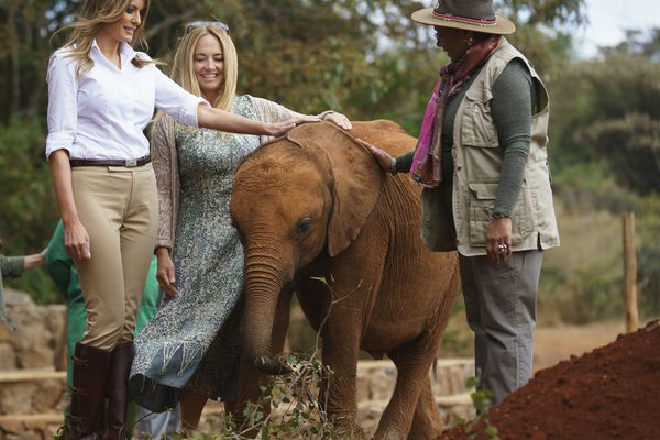 First lady Melania Trump with Margaret Kenyatta, Kenya's first lady, pets a baby elephant the at David Sheldrick Elephant & Rhino Orphanage at Nairobi National Park in Nairobi, Kenya, Friday, Oct. 5, 2018. First lady Melania Trump is visiting Africa on her first big solo international trip. (AP Photo/Carolyn Kaster)