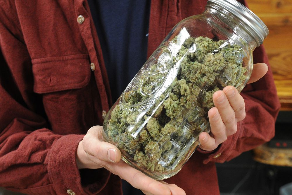 Jonathon Weseman shows a jar of DJ Short Flo marijuana buds in the cannabis store Enlighten Alaska on Spenard Road in Anchorage, Alaska on Friday, Dec. 29, 2017. The cannabis grown by Good AK Cannabis, in Fairbanks, AK has a THC content of 16.49 percent. (Bob Hallinen / ADN)