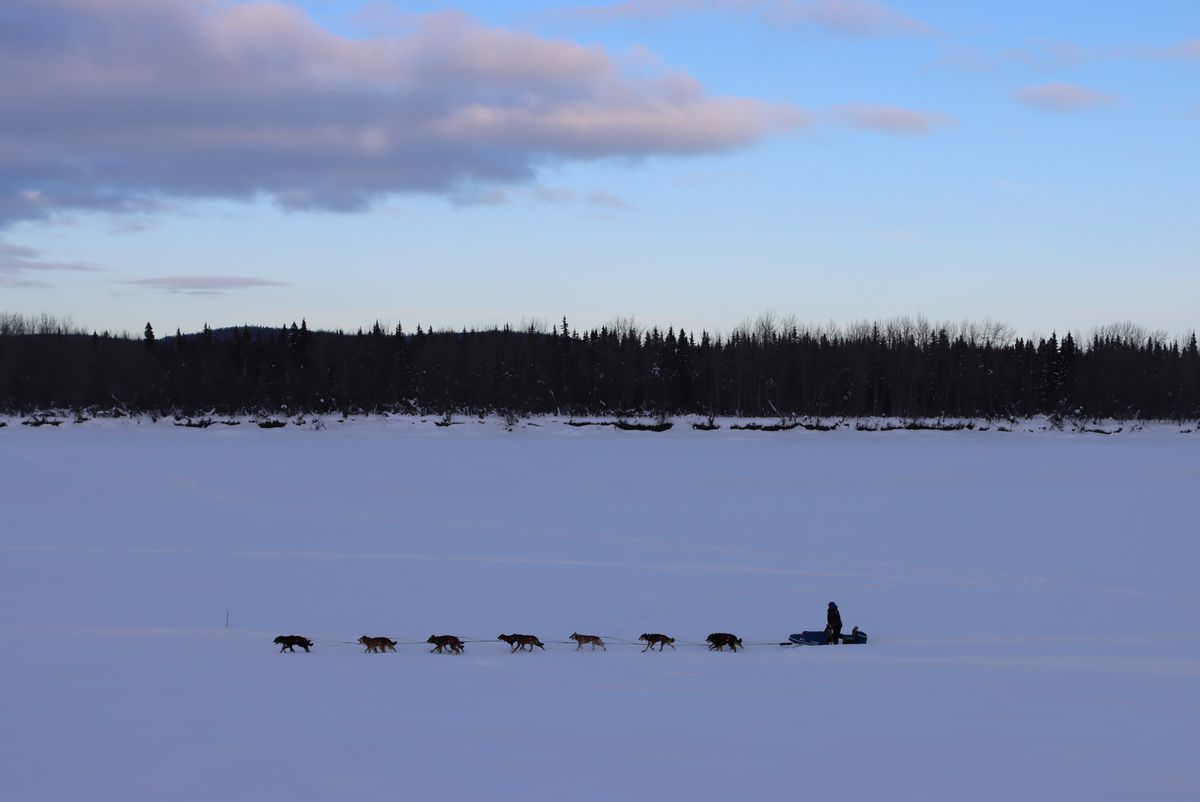 Seward musher Travis Beals mushes along the upper Kuskokwim River at sunset on his way into the McGrath checkpoint during the Iditarod Sled Dog Race on Tuesday. (Zachariah Hughes/for ADN)