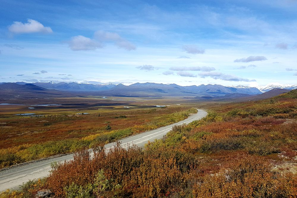 Fall along the Denali Highway provides ample space for families to roam a beautiful, remote landscape. (Photo by Erin Kirkland)