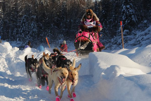 DeeDee Jonrowe drives her dog team onto the Susitna River during the Restart of the Iditarod Trail Sled Dog Race on Sunday, March 4, 2018. (Bill Roth / ADN)