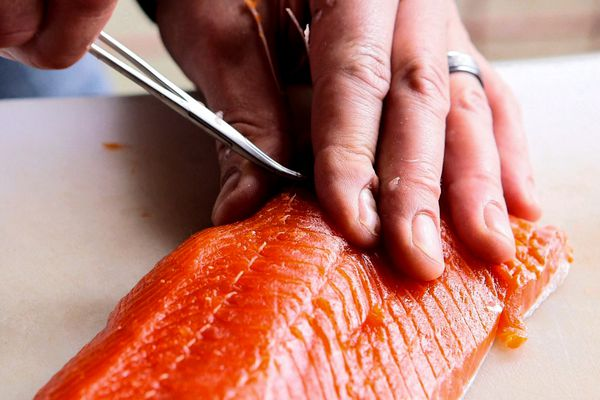 Chef Patrick Hoogerhyde of Bridge Seafood in Anchorage demonstrates how to fillet a sockeye salmon. June 1, 2015 (Tara Young / Alaska Dispatch News)