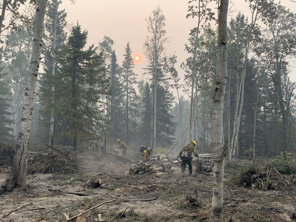 Firefighters from the Snake River Valley Type 2 crew, up from Oregon, cut trees to improve a dozer line off of Skilak Lake Road, east of Sterling, to help contain the Swan Lake fire, Friday, Aug. 30, 2019. (Jeff Parrott / ADN)