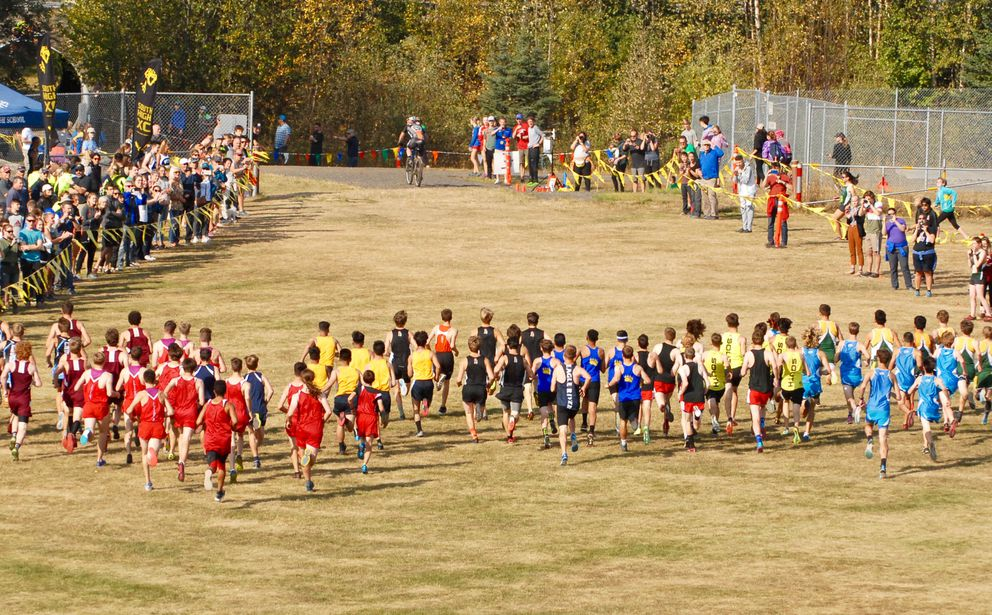 Runners in the boys varsity race leave the starting line at the Mustang Smokin' Stampede 5K races last Saturday. (Matt Tunseth / ADN)