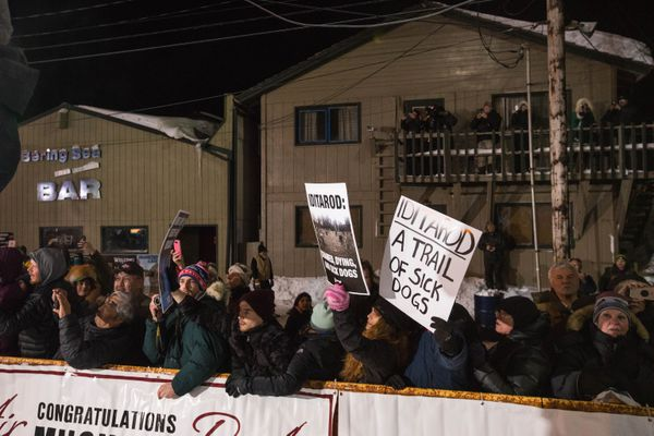 PETA activists protest the Iditarod early Wednesday morning, March 14, 2018 in Nome. (Loren Holmes / ADN)
